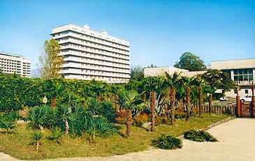 отель Питиус