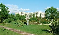 отель Самшитовая Роща