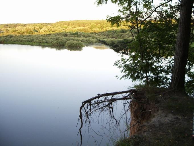 рогачевский район рыбалка