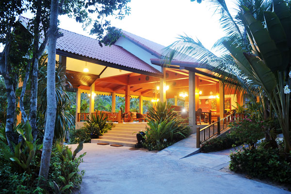 Coco palm самуи